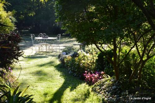 jardin,puces Lasmonzie,asters 005.JPG