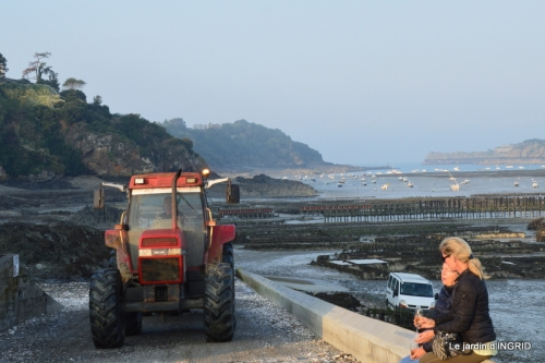 Cancale,plages du D,Joseph,Mesnil Gaillard,Miromesnil 035.JPG