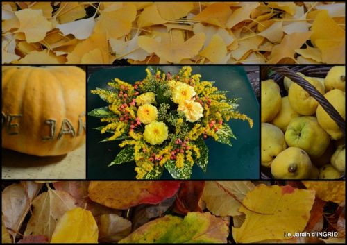 2015-11-13 brume,dentelles,fleurs,Noel Jardiland.jpg