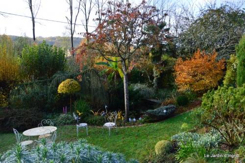jardin automne ,petits roses 033.JPG