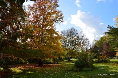 jardin serre bucher automne 051.JPG