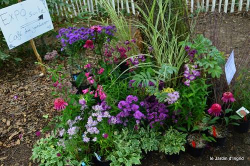 mariage,jardin,la Brande,figues 108.JPG