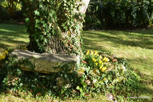 cygnes,jardin,apres la tonte 073.JPG
