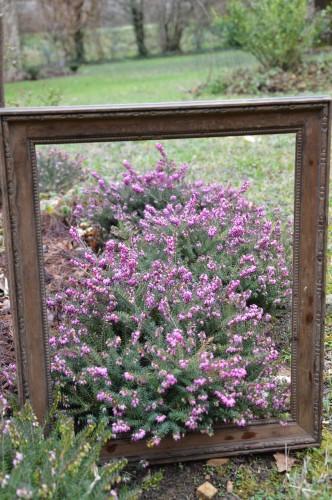 chez Maryse,pour tableaux,jardin 2013 044.JPG