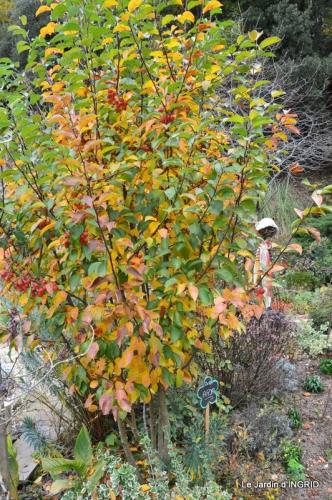 les arbres en automne,cabane 021.JPG