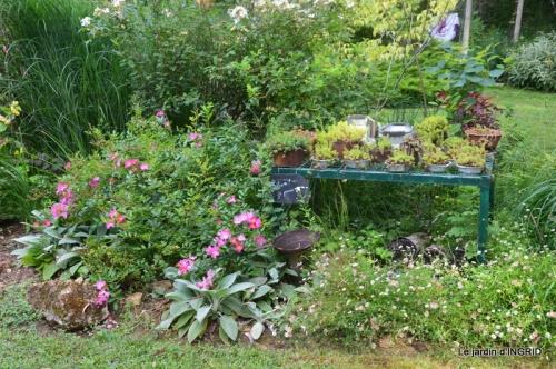 portes ouvertes,taille marguerittes,jardin 023.JPG