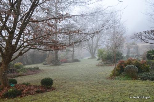 jardin givré,oiseaux 046.JPG