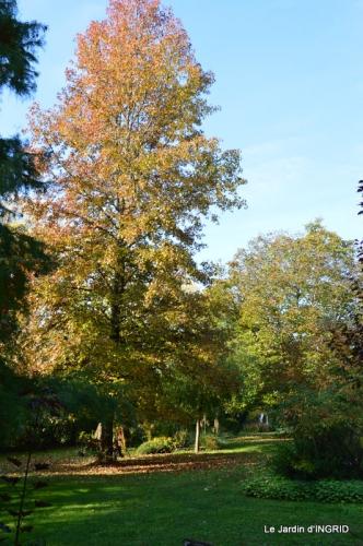 automne, décos cucurbitacées,jardin 012.JPG