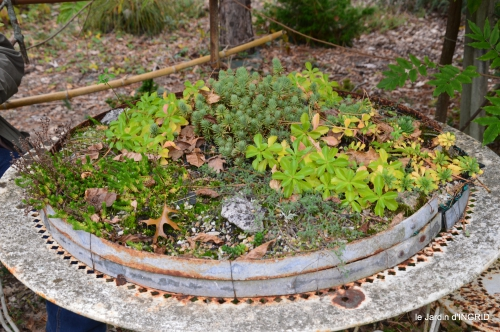 brocante st avit Se.jardin st Avt,récolte tomates 159.JPG
