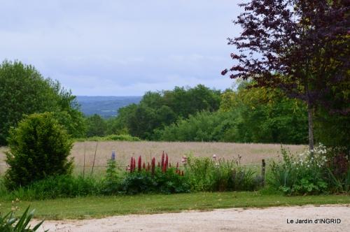 maison,jardin Bernadette,et jardin Claudine 028.JPG
