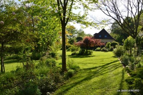 jardin soir et matin 046.JPG