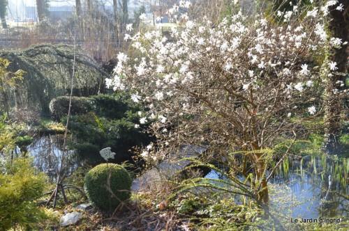 bouquet mamy,jacinthes,semis,jardin 041.JPG