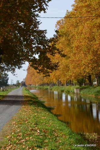 canal automne ,jardin,Ines 093.JPG