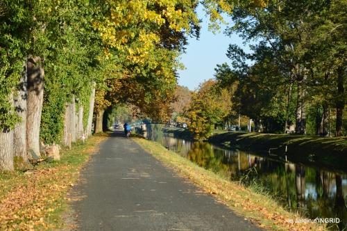 jardin automne,voisinage,canal 169.JPG