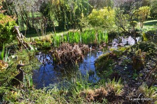 semis,bassin,tour du jardin 123.JPG