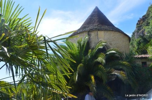 bambous Roque Gageac,jardin,bouquet 203.jpg