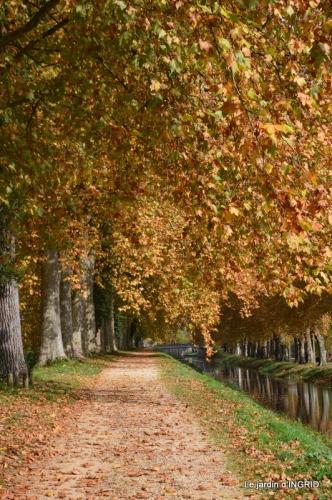 canal automne ,jardin,Ines 105.JPG