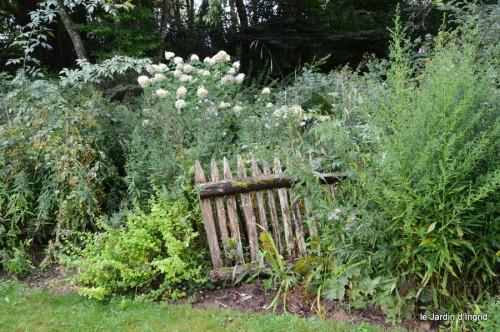 asters,bouquets,jardin de Lilianne 030.JPG