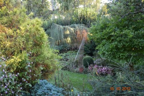citrouilles,jardin,Combarel 023.JPG