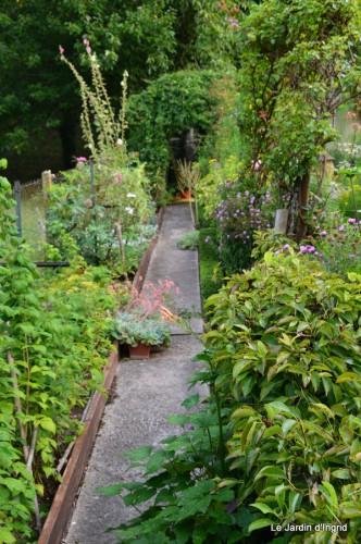 tournesols,pt jardin,nénuphard,libellules,lavande bouquet,carava 039-001.JPG