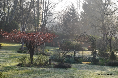saumon,paquerettes,jardin blanc 020.jpg