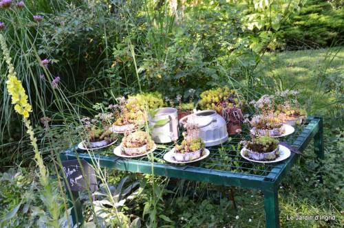 chez Fabien,le canal,jardin,hémérocalles,le souci,potager 151.JPG