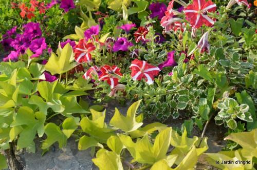 jardin,fruits,Caro,papillons,manthe religieuse,Lalinde 079.JPG