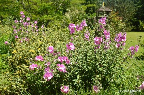 le jardin de Frescati,roses 107.JPG