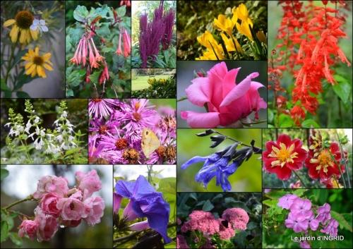 2017-08-28 taille,jardin,bouquets,salon du livre,Ines,piscine,filles5.jpg