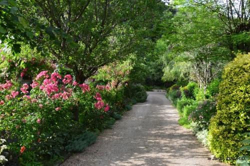 potager,chenille,pour le 18 juin,tour du jardin 076.JPG