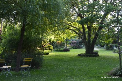cygnes,Sophie,jardin en mai 034.JPG