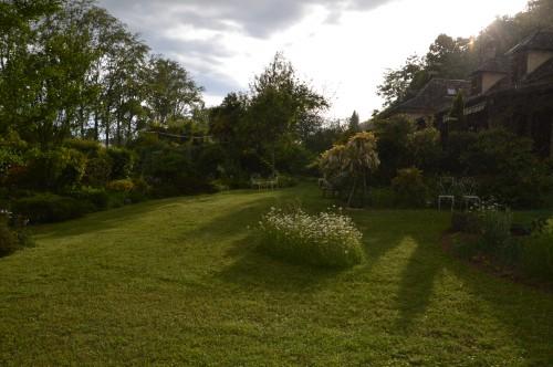 jardin,premières roses,colline,avant l'orage 122.JPG