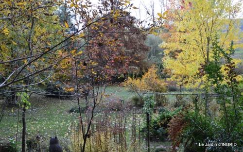 petit érable,le canal et lejardin àl'automne 157.JPG