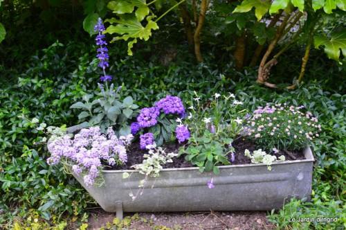 Arya,roses,cygnes,coulobre,nigelles,abeille,cabane 139.JPG