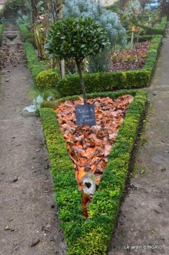 Brouillard,cypres chauve,jardinage 009.JPG