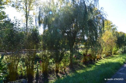jardin automne,voisinage,canal 162.JPG