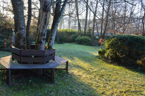 première gelée,compositions florales à garder,jardin 030-001.JPG