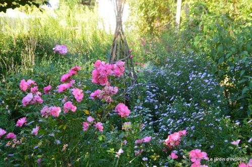 fleurs petit jardin,bouquets,grand jardin 072.JPG