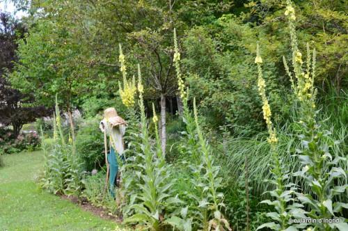 chez Fabien,le canal,jardin,hémérocalles,le souci,potager 058.JPG