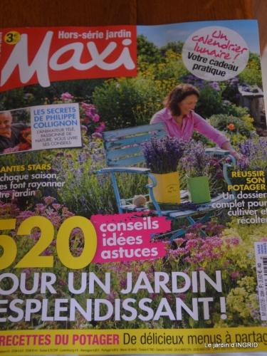 reportage,jardin tonte, 019.JPG