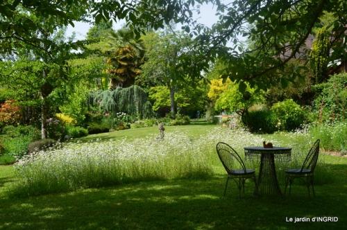 jardin en mai,visites bus,petit jardin 161.JPG