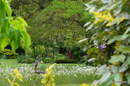 roses,jardin,Le Fleix,bleu 083-001.JPG