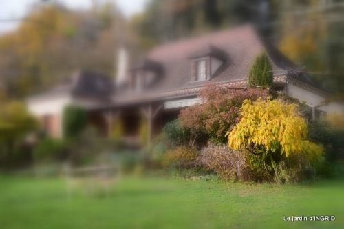 troc,automne,serre 028.JPG