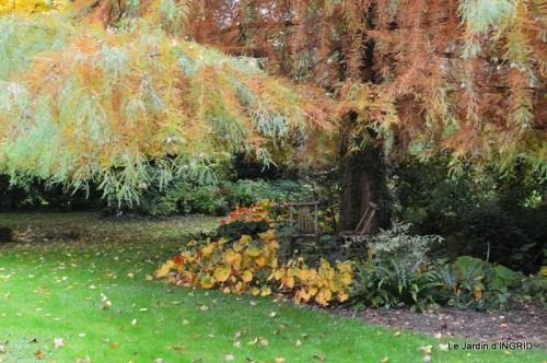 les arbres en automne,cabane 036.JPG