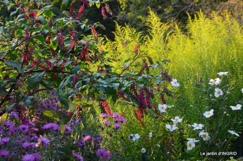 fleurs petit jardin,bouquets,grand jardin 096.JPG