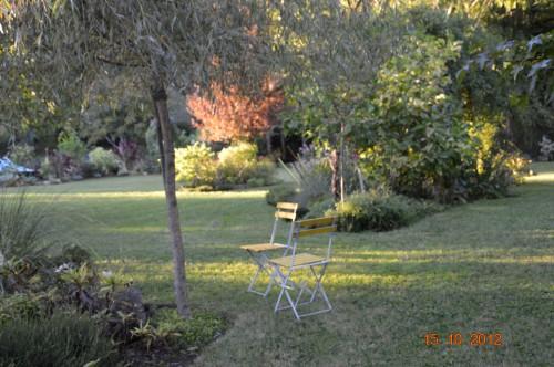 citrouilles,jardin,Combarel 035.JPG