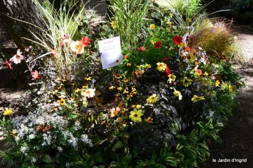 mariage,jardin,la Brande,figues 105.JPG
