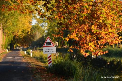jardin automne,voisinage,canal 078.JPG