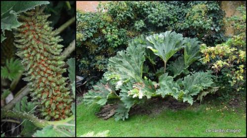 2014-09-24 jardin de Marie,éoliennes,Ciron,Angles,Fontgombault9.jpg