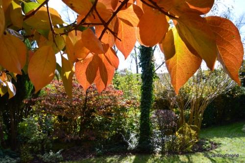 anniversaire Mamy,chateau d'eau,jardin automne 089.JPG